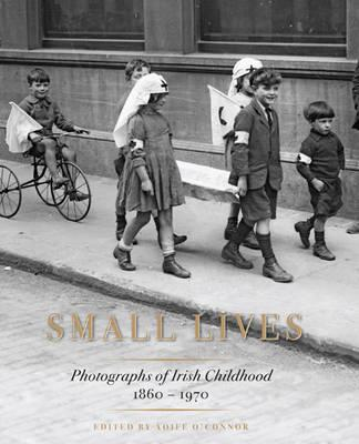 Small Lives (BOK)