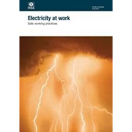 Electricity at work (BOK)