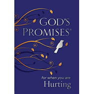 God's Promises for When You are Hurting (BOK)