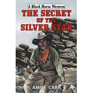 Secret of the Silver Star (BOK)