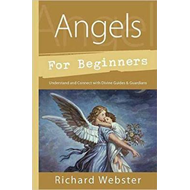 Angels for Beginners (BOK)