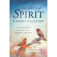 Produktbilde for Secrets of Spirit Communication (BOK)