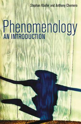 Phenomenology - an Introduction (BOK)