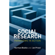 Social Research - Paradigms in Action (BOK)