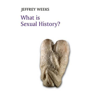 What is Sexual History? (BOK)