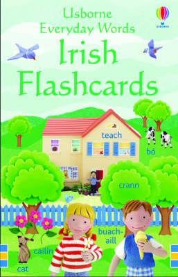 Usborne Everyday Words: Irish Flashcards (BOK)
