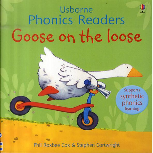 Goose On The Loose Phonics Reader (BOK)