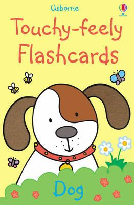 Touchy-feely Flashcards (BOK)