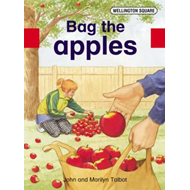 Wellington Square Assessment Kit - Bag the Apples (BOK)