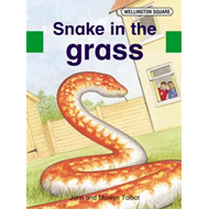 Wellington Square Assessment Kit - Snake in the Grass (BOK)