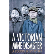 Survivors: A Victorian Mine Disaster: A Young Boy's Story (BOK)