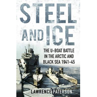 Steel and Ice (BOK)