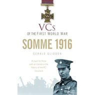 VCs of the First World War (BOK)