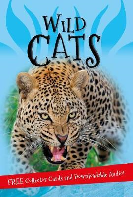 It's all about... Wild Cats (BOK)