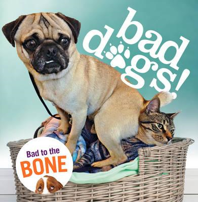 Bad Dogs (BOK)