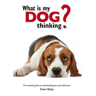 What is my Dog Thinking? (BOK)