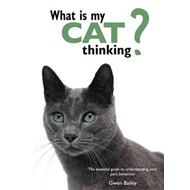 What is My Cat Thinking?: The Essential Guide to Understanding Your Pet (BOK)