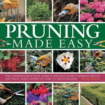 Pruning Made Easy (BOK)