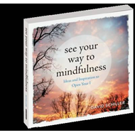 See Your Way to Mindfulness (BOK)