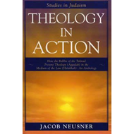 Theology in Action (BOK)
