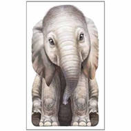 Little Elephant (BOK)