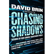 Chasing Shadows (BOK)