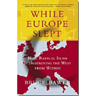 While Europe Slept (BOK)