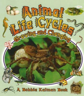 Animal Life Cycles (BOK)