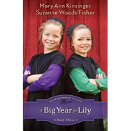 A Big Year for Lily (BOK)