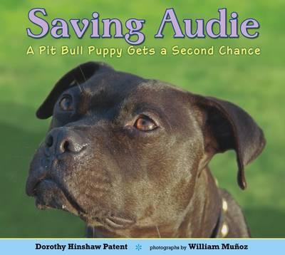 Saving Audie: A Pit Bull Puppy Gets a Second Chance (BOK)