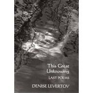 This Great Unknowing (BOK)