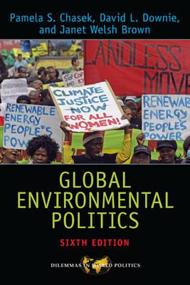 Global Environmental Politics (BOK)