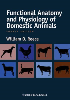 Functional Anatomy and Physiology of Domestic Animals (BOK)