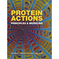 Produktbilde for Protein Actions - Principles and Modeling (BOK)