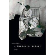 Theory of Regret (BOK)