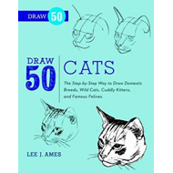 Draw 50 Cats (BOK)