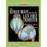 The Human Brain During the Late First Trimester (BOK)