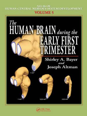 The Human Brain During the Early First Trimester (BOK)