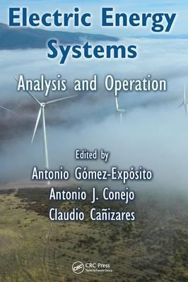 Electric Energy Systems (BOK)