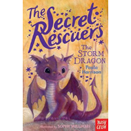 Secret Rescuers: The Storm Dragon (BOK)