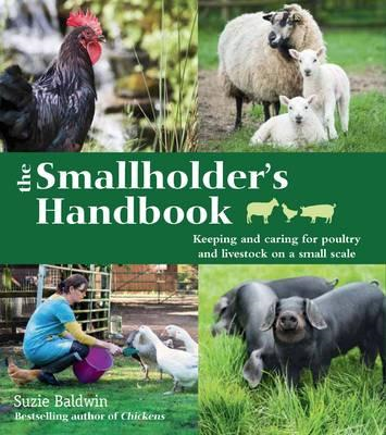 Smallholder's Handbook: Keeping & caring for poultry & lives (BOK)