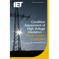 Condition Assessment of High Voltage Insulation in Power Sys (BOK)
