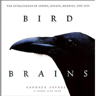Bird Brains (BOK)