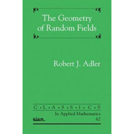 Geometry of Random Fields