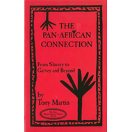 Pan-African Connection: From Slavery to Garvey and Beyond (BOK)