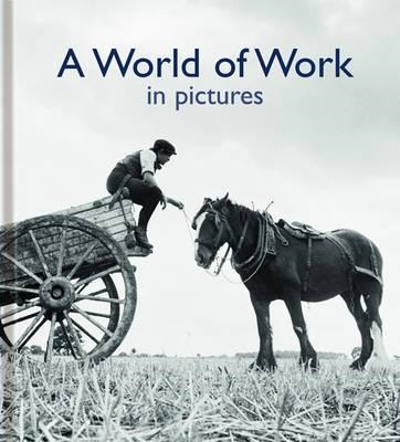 World of Work in Pictures (BOK)