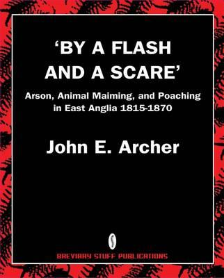 'By a Flash and a Scare' (BOK)