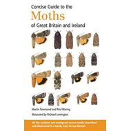 Concise Guide to the Moths of Great Britain and Ireland (BOK)
