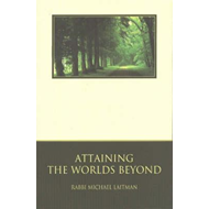 Attaining the World's Beyond (BOK)