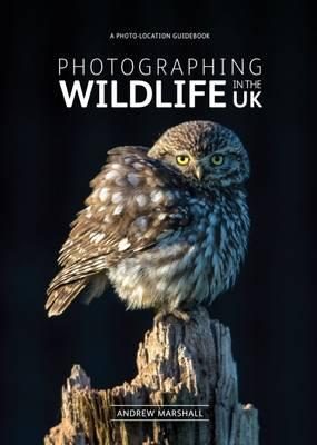 Photographing Wildlife in the UK (BOK)